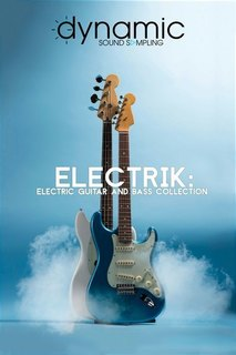 dynamic_sound_sampling-electrik_electric_guitar_and_bass_collection