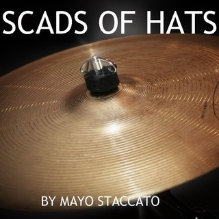 hugsylvania-scads_of_hats