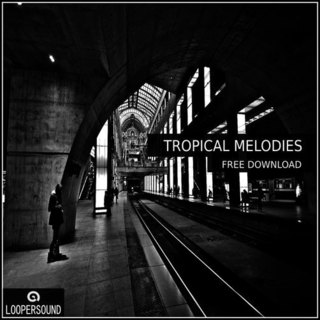 loopersound-tropical_melodies